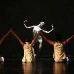 The Poplar - PremiereModern Ballet in one act