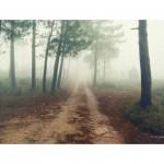 AJ_LLORENS_CAMINOS_02